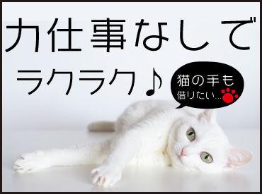 株式会社ニューステップ 検見川浜エリアの画像・写真
