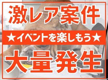 株式会社コノフィーの画像・写真