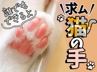 テイケイワークス株式会社 藤沢支店/TW141の画像・写真