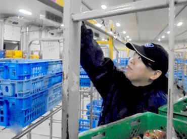 株式会社大福物流 戸島営業所 ※2020年9月OPENの画像・写真