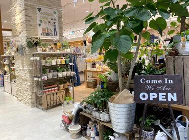 ma faveur(マ・ファヴール)名古屋茶屋店の画像・写真