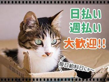 株式会社G&G 三河営業所の画像・写真