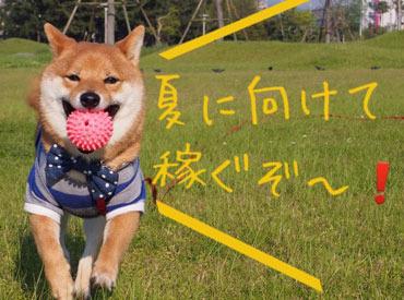 株式会社ログロール/太宰府支店の画像・写真