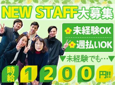 株式会社MAYA STAFFING(勤務地:株式会社NTTマーケティングアクト)の画像・写真