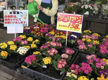 株式会社 杏林堂薬局 志都呂店の画像・写真