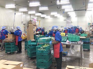 朝日青果株式会社 神奈川営業所の画像・写真