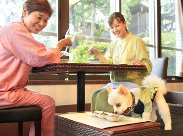 愛犬お宿の画像・写真