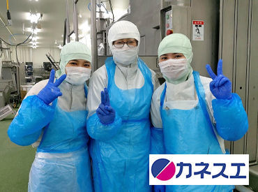 株式会社カネスエ 豊田センターの画像・写真