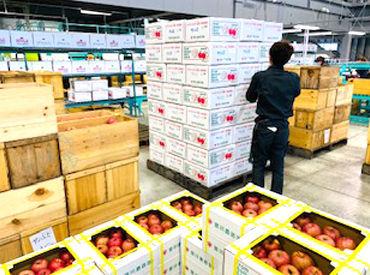 宮川商店株式会社の画像・写真
