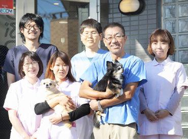 猫の動物病院シュシュの画像・写真