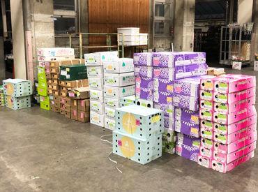 トラスト・ライン株式会社 川崎北部市場の画像・写真