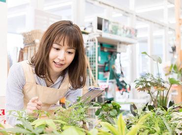 株式会社ヒト・コミュニケーションズ 九州支社/02nb108の画像・写真