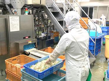 株式会社南日本フーズの画像・写真