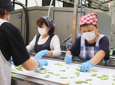 JA新潟みらい しろね野菜流通センターの画像・写真
