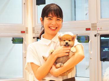 ペットショップCoo&RIKU 小倉店 ※2021年8月7日 NEW OPENの画像・写真