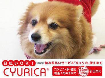 株式会社ニュー近代警備 江戸川区エリアの画像・写真