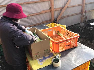合同会社野菜屋総合サービスの画像・写真