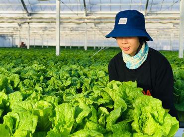 TEN Green Factory株式会社の画像・写真