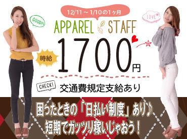 株式会社アルファスタッフ 勤務地:神戸市/MK-77208の画像・写真