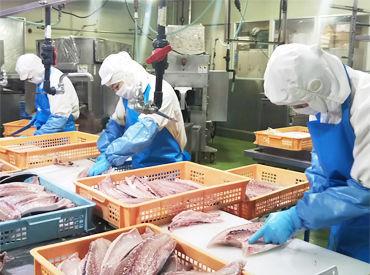 株式会社人材サポート 南大阪営業所の画像・写真