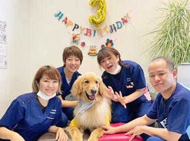 あず動物病院の画像・写真
