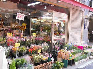 フラワーショップ花エリカ 戸越店の画像・写真