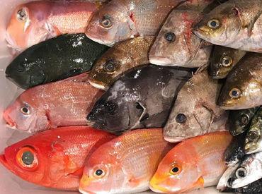 徳島魚類有限会社の画像・写真