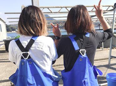 株式会社長崎種苗の画像・写真