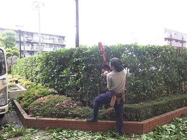 株式会社緑研の画像・写真