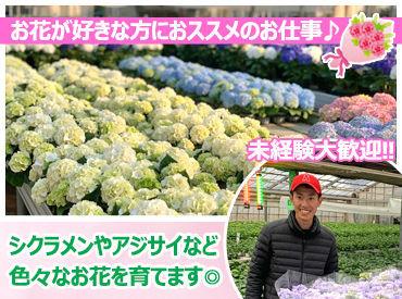 有限会社大栄花園の画像・写真