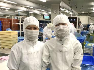 株式会社フリジポート 熊本工場の画像・写真