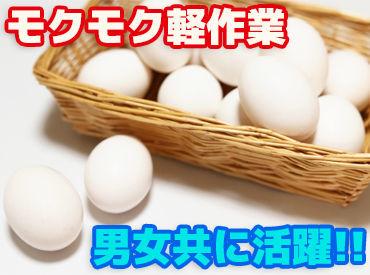株式会社山岸要商店の画像・写真
