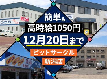 ピットサークル 新潟店の画像・写真