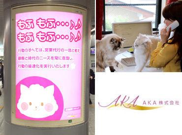 AKA株式会社の画像・写真