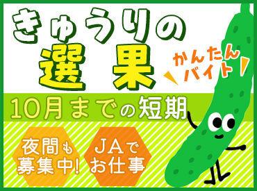 JA全農福島 会津野菜館の画像・写真