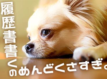 株式会社綜合キャリアオプション  【2501CU0308GA1★10】の画像・写真