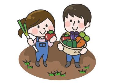 坂田農園の画像・写真