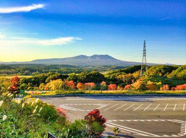 株式会社春夏秋冬の画像・写真