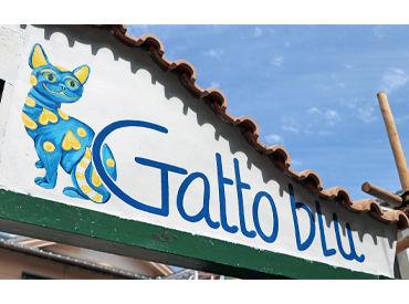 Gatto blu(ガットブル) の画像・写真