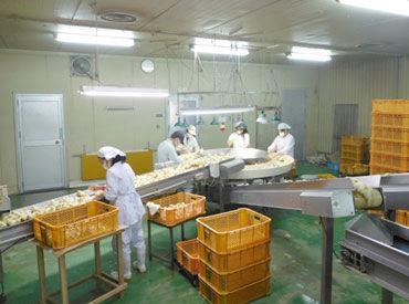 鹿児島くみあいチキンフーズ株式会社種鶏課 加治木ふ化場の画像・写真