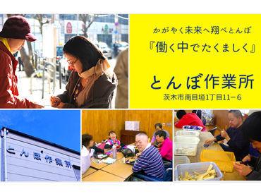 社会福祉法人とんぼ福祉会 本部の画像・写真