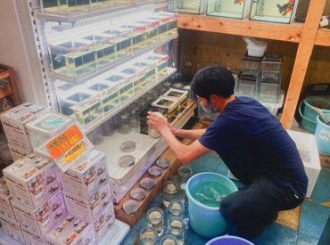 アクアエフ 神戸店の画像・写真