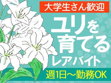 株式会社 千歳園の画像・写真