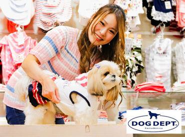 DOGDEPT小田原店の画像・写真