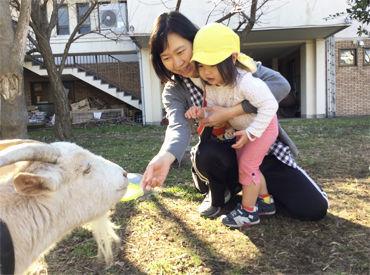 ひよし保育園の画像・写真