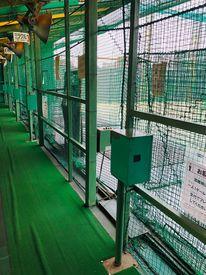 ワセダオートテニスプラザの画像・写真