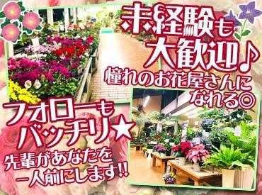 株式会社サンポーの画像・写真