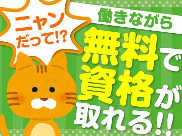 株式会社kotrio 横浜支店/●R※派遣先:横浜市瀬谷区エリアの画像・写真
