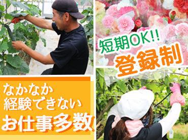 兵庫六甲農業協同組合 神戸西営農総合センターの画像・写真