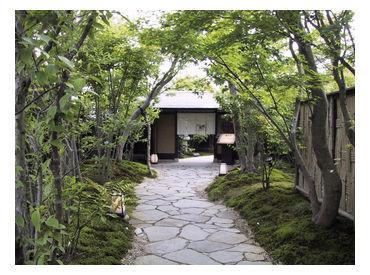 梅の花 金沢店の画像・写真